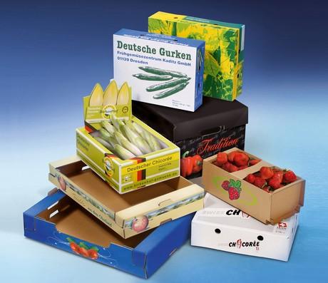 Tendencias de cartón corrugado en envases para frutas y hortalizas